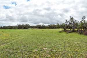 20838 Norman Rd (54)