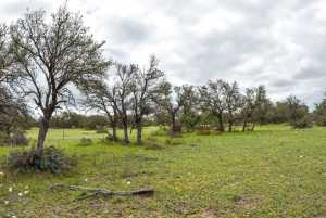 20838 Norman Rd (56)