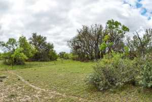 20838 Norman Rd (57)